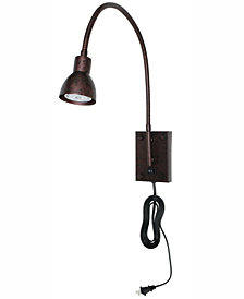 Cal Lighting Gooseneck Wall Light
