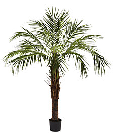 Nearly Natural 6' Artificial Robellini Palm Tree