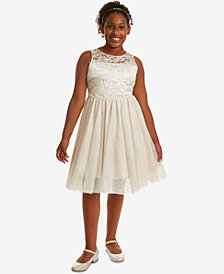 Rare Editions Big Girls Plus Embroidered Mesh Dress