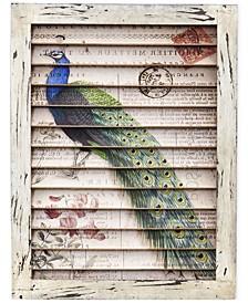 Peacock Window Shutter Wall Decor