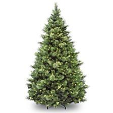 National Tree 7' Carolina Pine Hinged Tree with 700 Clear Lights