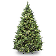 National Tree 7' Carolina Pine Hinged Tree with 700 Clear Lights