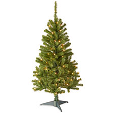 National Tree 4' Canadian Fir Grande Wrapped Tree with 100 Clear Lights
