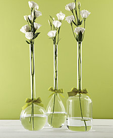 Sleek And Chic Vase Trio with Sage Green Ribbon Includes 3 Shapes - Tear Drop, Round, Jug