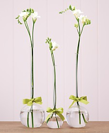 Sleek And Chic Teardrop Vases, Set of 3