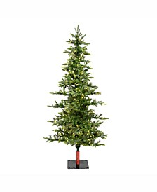 6' Shawnee Fir Artificial Christmas Tree with 250 Warm White LED Lights