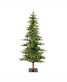 Vickerman 6' Shawnee Fir Artificial Christmas Tree with 250 Warm White LED Lights