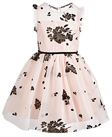 Little Girls Floral Mesh Dress