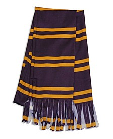 Big Boys and Girls Harry Potter Gryffindor Kids Economy Scarf Accessory