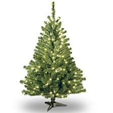 National Tree 4' Kincaid Spruce Tree w/100 Clear Lights