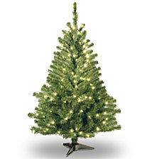 National Tree 4' Kincaid Spruce Tree w/100 Clear Lights