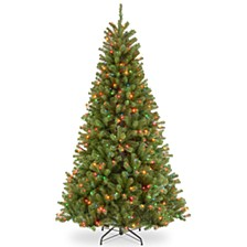 National Tree 9' North Valley Spruce Tree with 700 Multicolor Lights