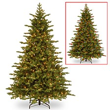 7 .5' Feel Real Vienna Fir Tree with 750 Dual Color(R) LED Lights & Caps + PowerConnect