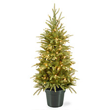 National Tree Company 4' Weeping Spruce Wrapped Tree in Green Pot with 100 Clear Lights