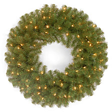 """National Tree Company 24"""" North Valley Spruce Wreath with 50 Clear Lights"""