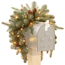 "National Tree 36"" Frosted Arctic Spruce Mailbox Swag with Battery Operated Warm White LED Lights"