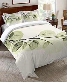 Laural Home Green X-Ray of Eucalyptus Leaves  Queen Comforter