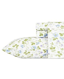 Laura Ashley Queen Spring Bloom Sheet Set