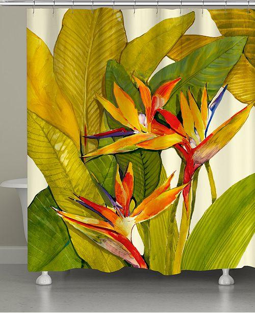 Laural Home Tropical Bird Shower Curtain