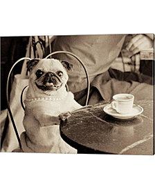 Cafe Pug by Jim Dratfield Canvas Art