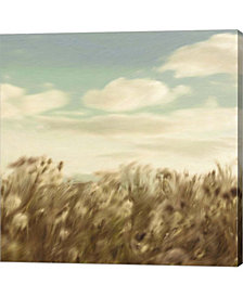 Dandelion Field by Posters International Studio Canvas Art