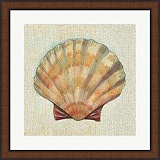 Coastal Treasures I By Josefina Framed Art