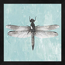 Dragonfly Iii By Pi Galerie Framed Art