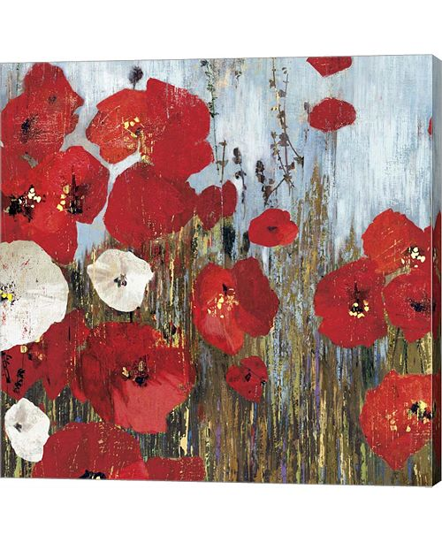 Metaverse Passion Poppies I By Posters International Studio Canvas Art