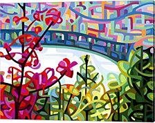 Salmon Ridge By Mandy Budan Canvas Art