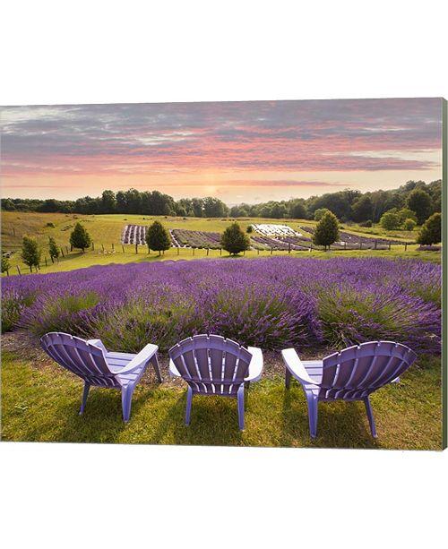 Macys Furniture Outlet Michigan: Metaverse Lavender Chairs, Horton Bay, Michigan '14-Color