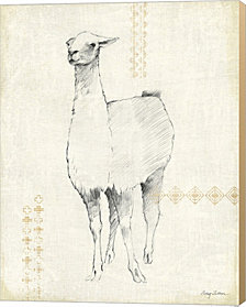 Llama Land XII by Avery Tillmon Canvas Art