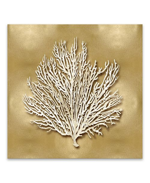 "Artissimo Designs Sea Fan On Gold I Coated Embellished Canvas Art - 30"" W x 30"" H x 1.5"" D"