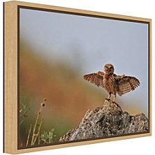 Amanti Art I Can Fly by Muayad Amer Canvas Framed Art
