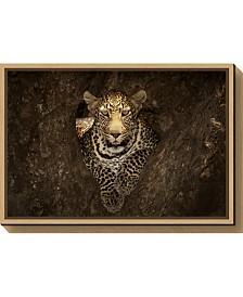 Amanti Art Leopard Resting on a Tree at Masai Mara Canvas Framed Art