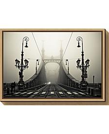 The Bridge by Arminmarten Canvas Framed Art
