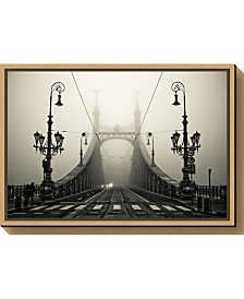 Amanti Art The Bridge by Arminmarten Canvas Framed Art