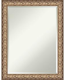 Amanti Art Cyprus 33x27 Wall Mirror