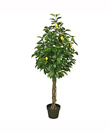"""51""""  Artificial Green And Yellow Real Touch Lemon Tree"""