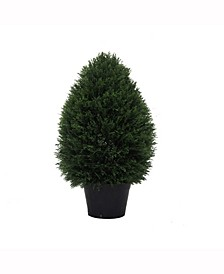 "24"" High X 15"" Wide Cedar Teardrop Shaped Bush Is Uv Resistant"