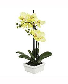 Vickerman 15.5 inch Artificial Green Orchid