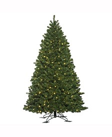 5.5 ft X 44 inch Oregon Fir Outdoor Ariticial Christmas Tree