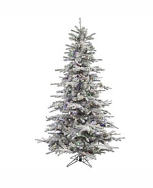 6.5 ft Flocked Sierra Fir Artificial Christmas Tree With 550 Multi-Colored Led Lights
