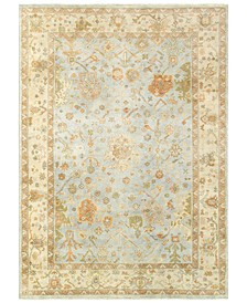 Home Palace 10304 Blue/Sand Area Rug