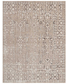 "kathy ireland Home KI34 Silver Screen KI343 5'3"" x 7'3"" Area Rug"