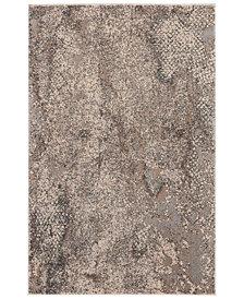 """kathy ireland Home KI35 Heritage KI352 Gray 3'11"""" x 5'11"""" Area Rug"""