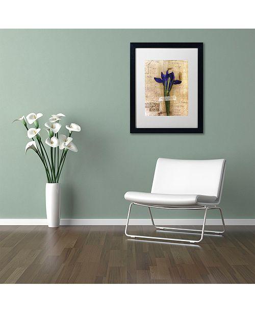 "Trademark Global Nick Bantock 'Iris Plan' Matted Framed Art, 16"" x 20"""