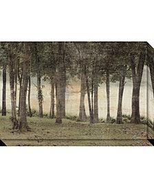 Amanti Art Forest Canvas Art Gallery Wrap