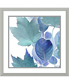 Amanti Art Xray Leaves IV Framed Art Print