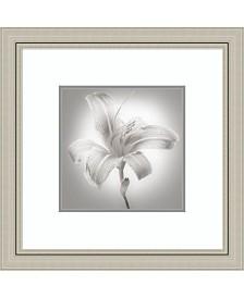 Amanti Art Tiger Lily I Framed Art Print