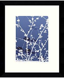 Amanti Art Autumn Branch Framed Art Print